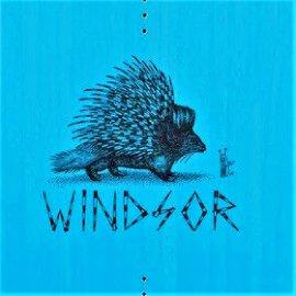 Вейкборд Slingshot 2021 Windsor